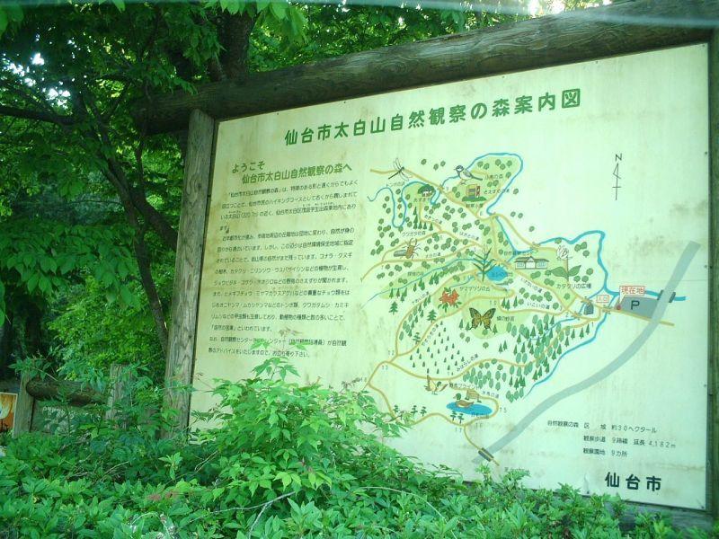 【地元紹介】太白山